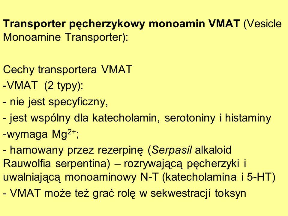 Transporter pęcherzykowy monoamin VMAT (Vesicle Monoamine Transporter):