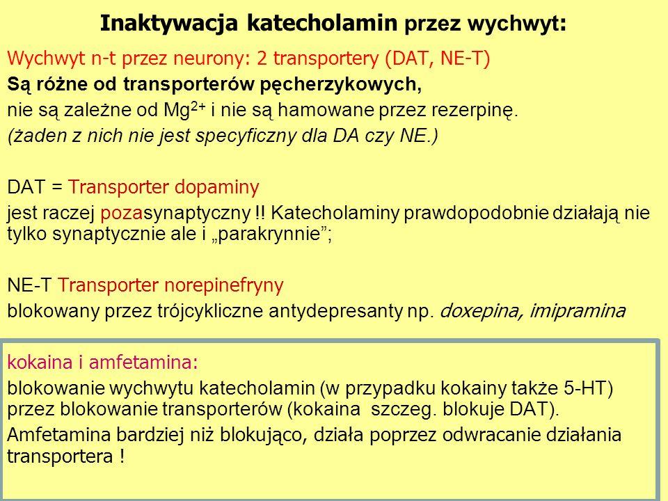 Inaktywacja katecholamin przez wychwyt: