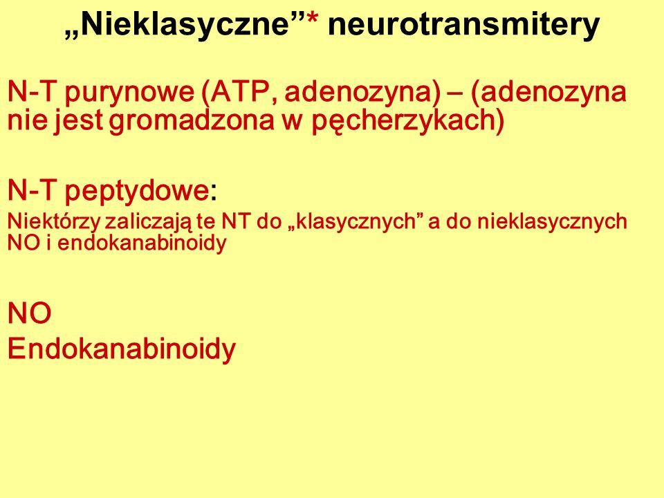 """""""Nieklasyczne * neurotransmitery"""