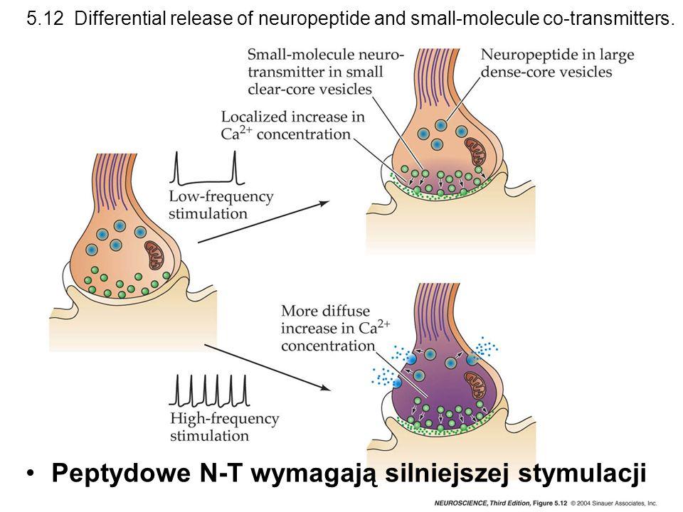 Peptydowe N-T wymagają silniejszej stymulacji