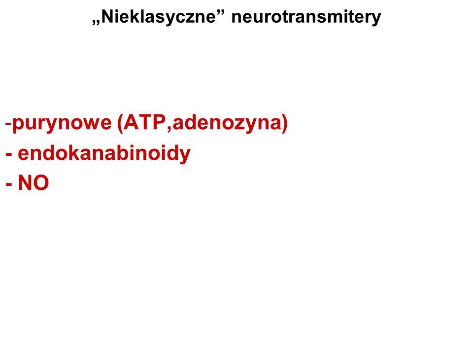 """""""Nieklasyczne neurotransmitery"""