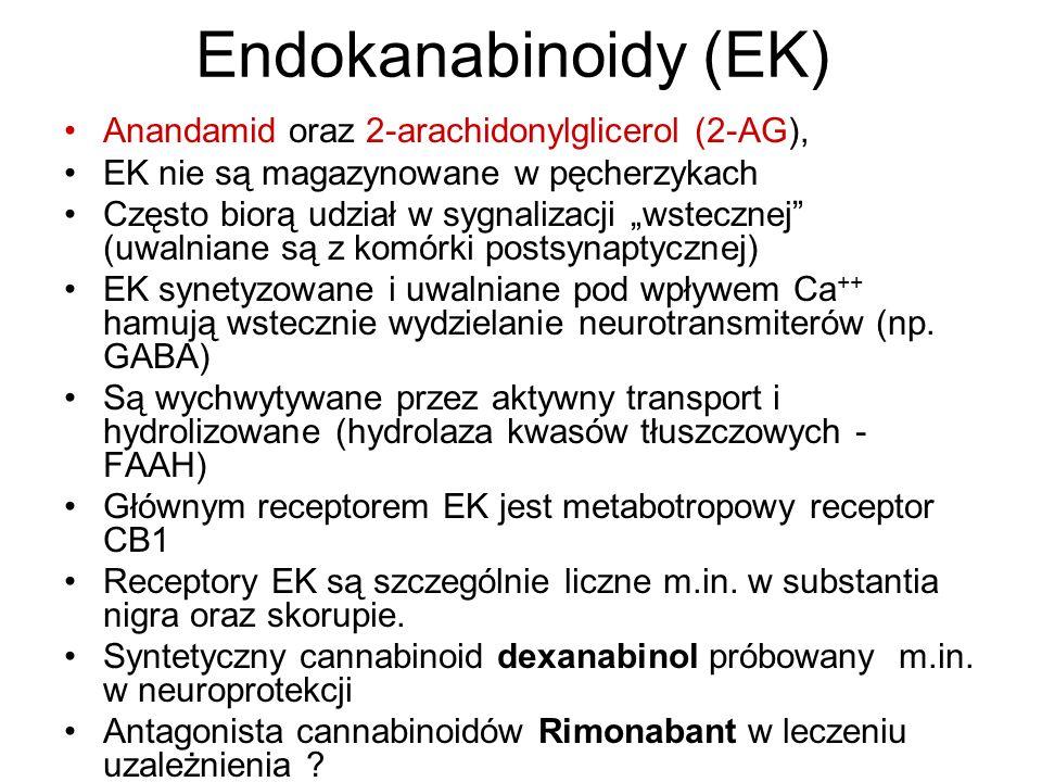 Endokanabinoidy (EK) Anandamid oraz 2-arachidonylglicerol (2-AG),