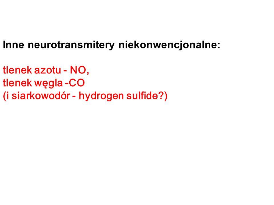 Inne neurotransmitery niekonwencjonalne: tlenek azotu - NO, tlenek węgla -CO (i siarkowodór - hydrogen sulfide )