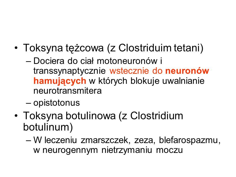 Toksyna tężcowa (z Clostriduim tetani)