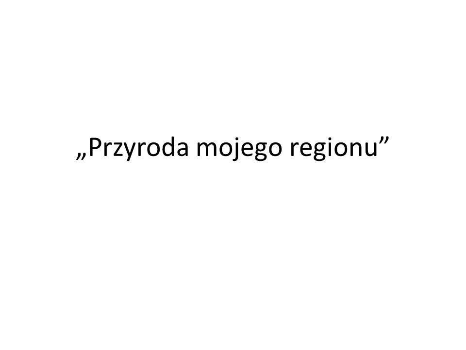 """""""Przyroda mojego regionu"""