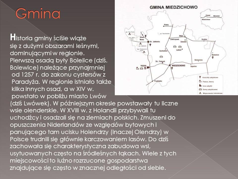 Gmina Historia gminy ściśle wiąże się z dużymi obszarami leśnymi,