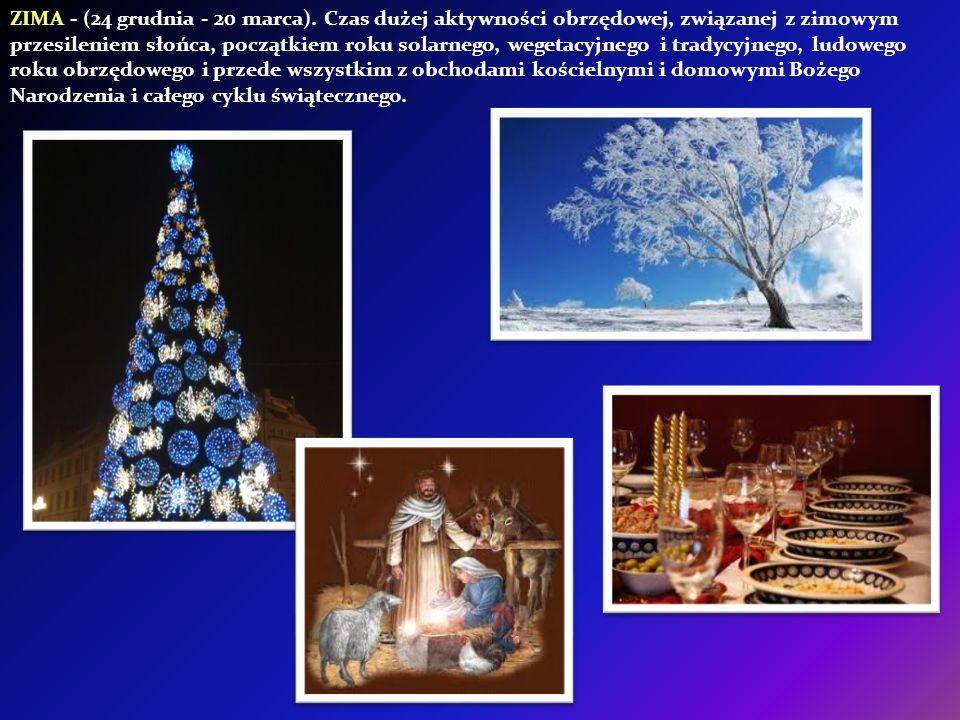 ZIMA - (24 grudnia - 20 marca)