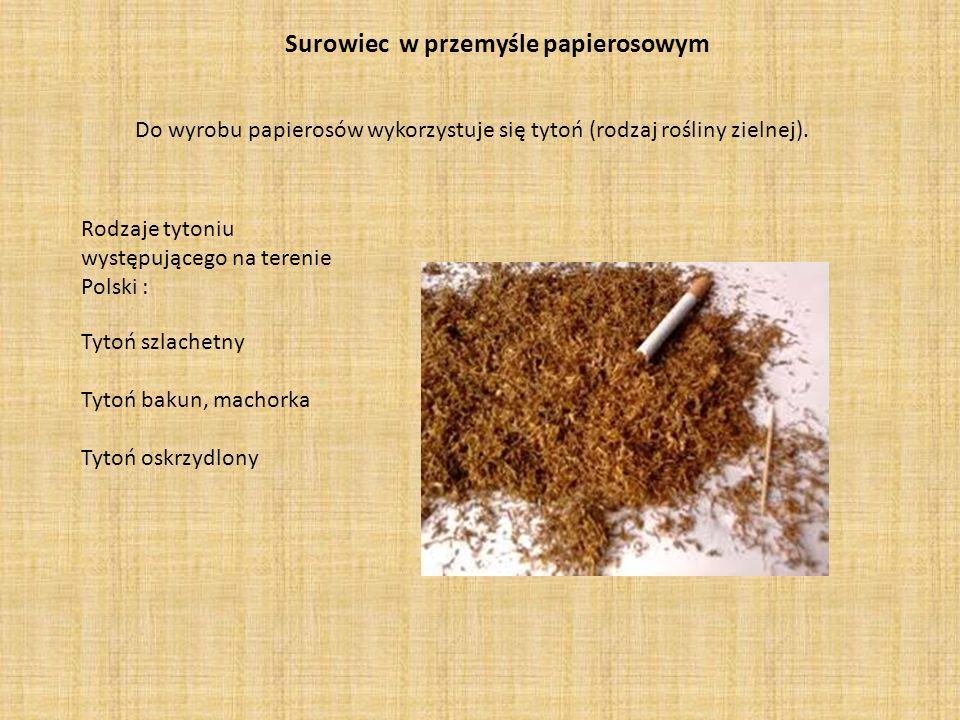 Surowiec w przemyśle papierosowym