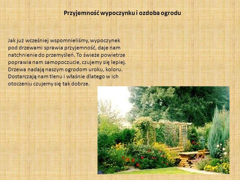 Przyjemność wypoczynku i ozdoba ogrodu
