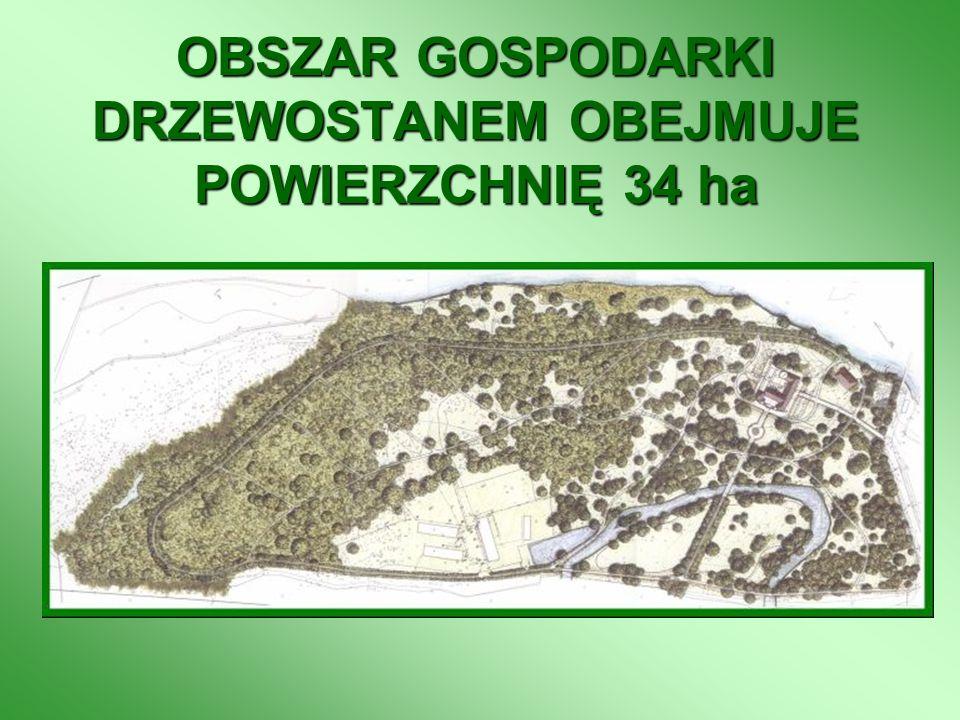 OBSZAR GOSPODARKI DRZEWOSTANEM OBEJMUJE POWIERZCHNIĘ 34 ha