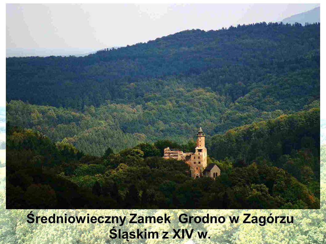 Średniowieczny Zamek Grodno w Zagórzu Śląskim z XIV w.