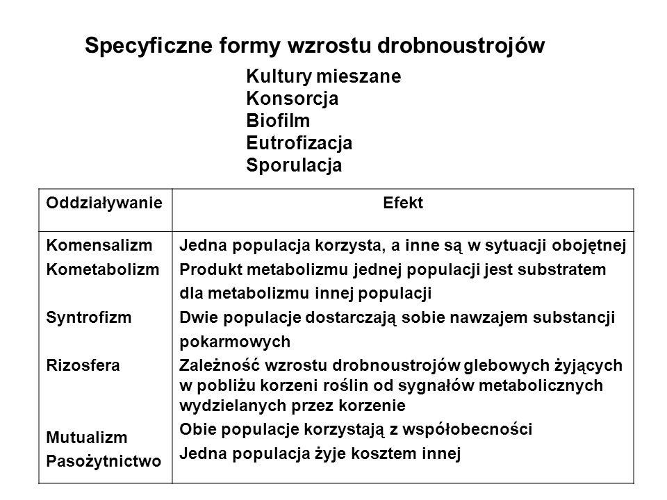 Specyficzne formy wzrostu drobnoustrojów