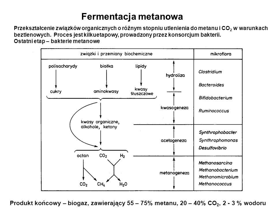 Fermentacja metanowa Przekształcenie związków organicznych o różnym stopniu utlenienia do metanu i CO2 w warunkach.