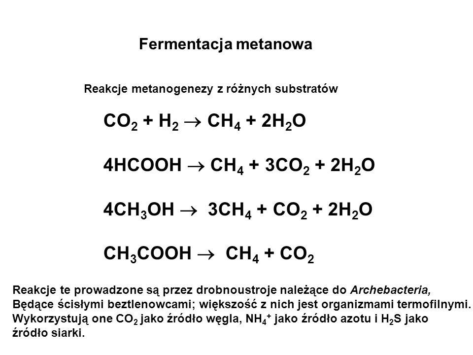 CO2 + H2  CH4 + 2H2O 4HCOOH  CH4 + 3CO2 + 2H2O