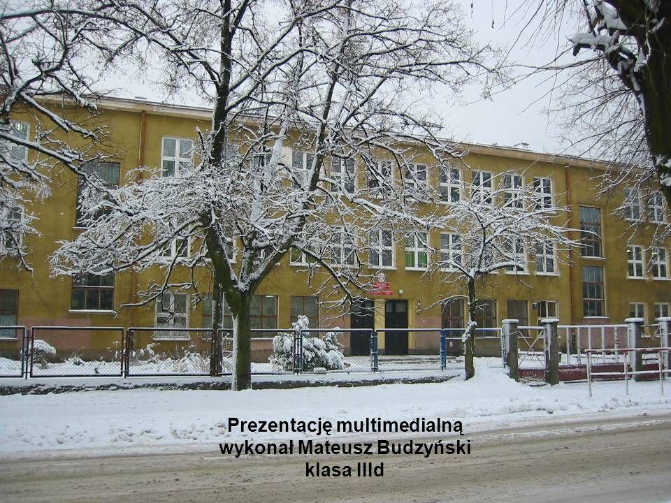 Prezentację multimedialną wykonał Mateusz Budzyński klasa IIId