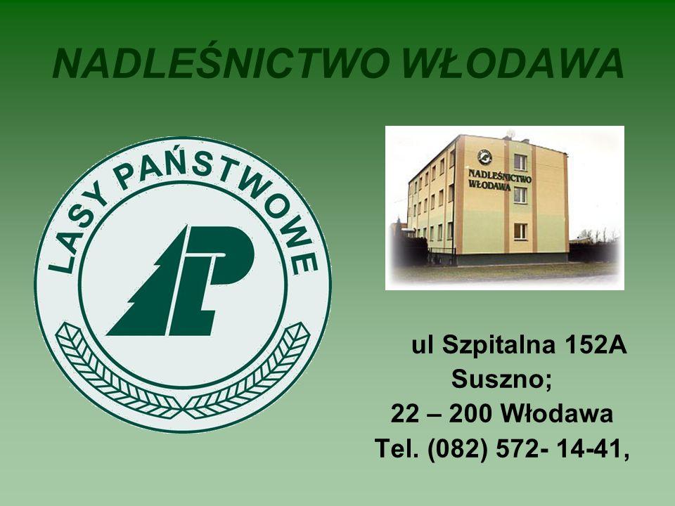 NADLEŚNICTWO WŁODAWA ul Szpitalna 152A Suszno; 22 – 200 Włodawa