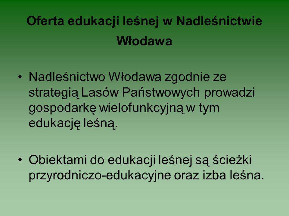 Oferta edukacji leśnej w Nadleśnictwie Włodawa