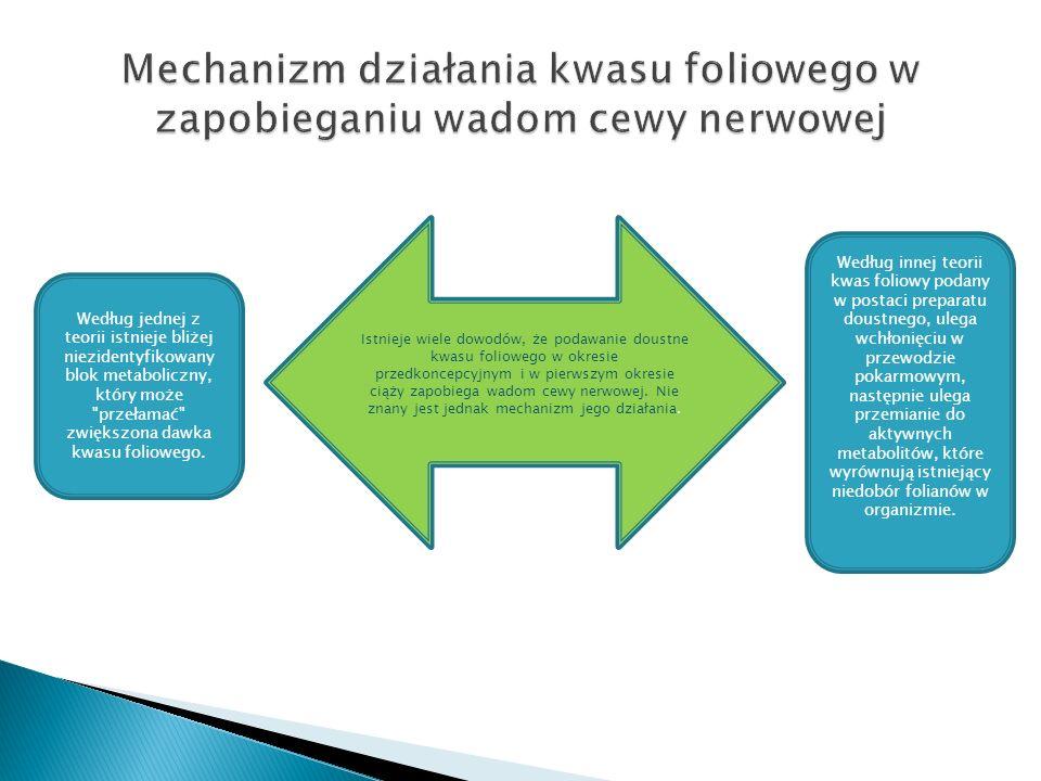 Mechanizm działania kwasu foliowego w zapobieganiu wadom cewy nerwowej