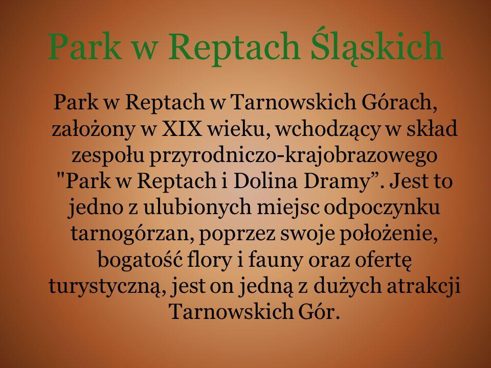 Park w Reptach Śląskich