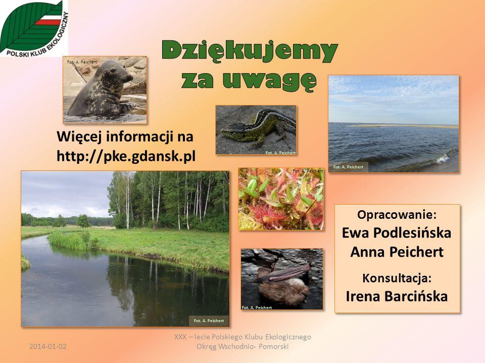 Dziękujemy za uwagę Więcej informacji na http://pke.gdansk.pl