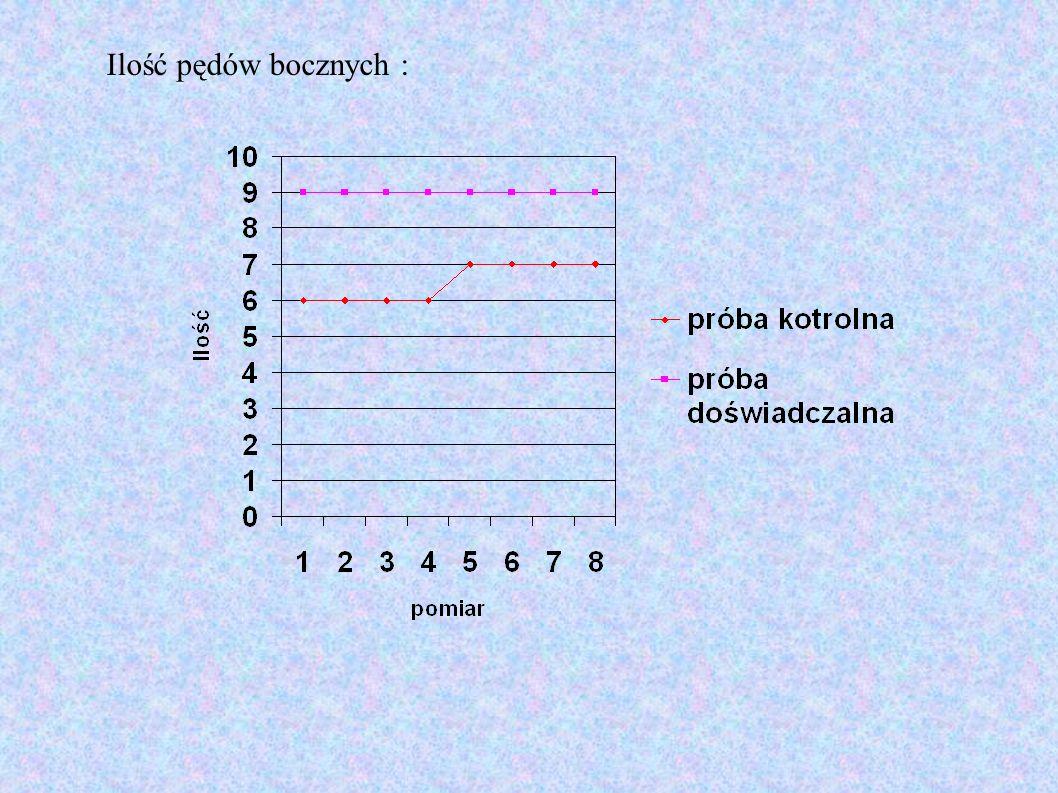 Ilość pędów bocznych :