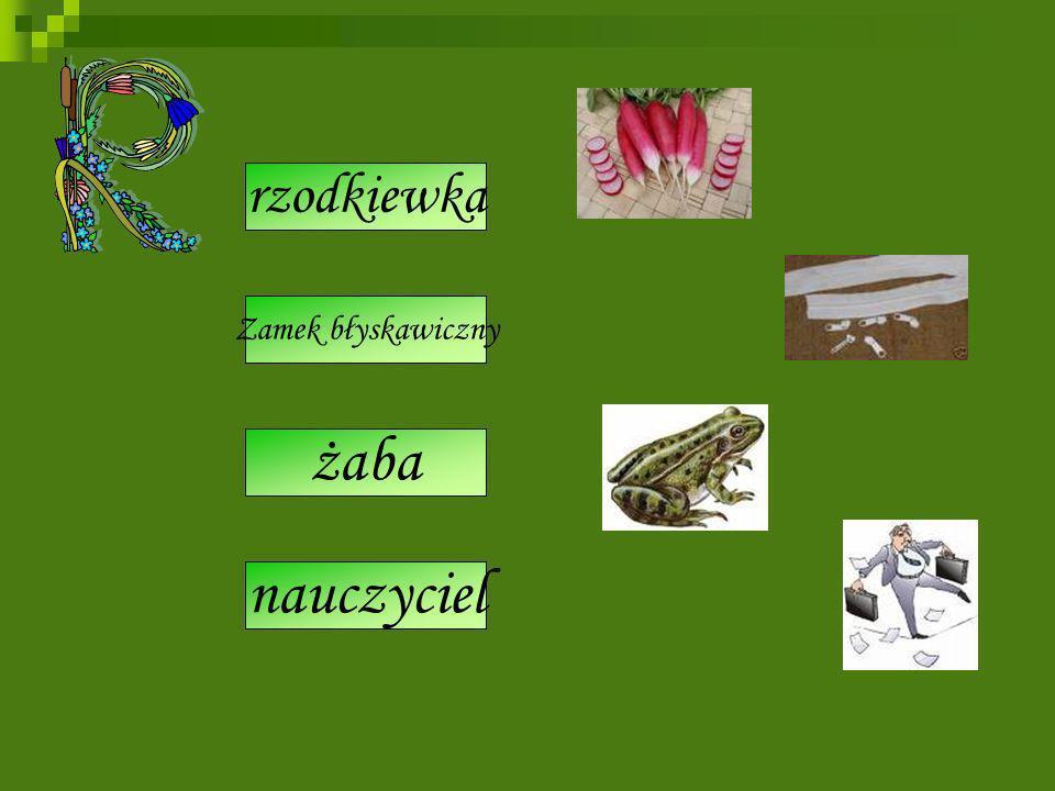 radiska rajfeszlos żaba rapitołaz rechtor nauczyciel rzodkiewka