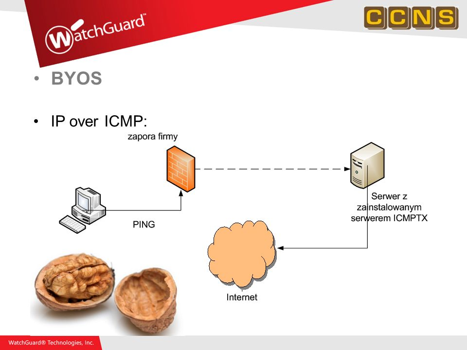BYOS IP over ICMP: