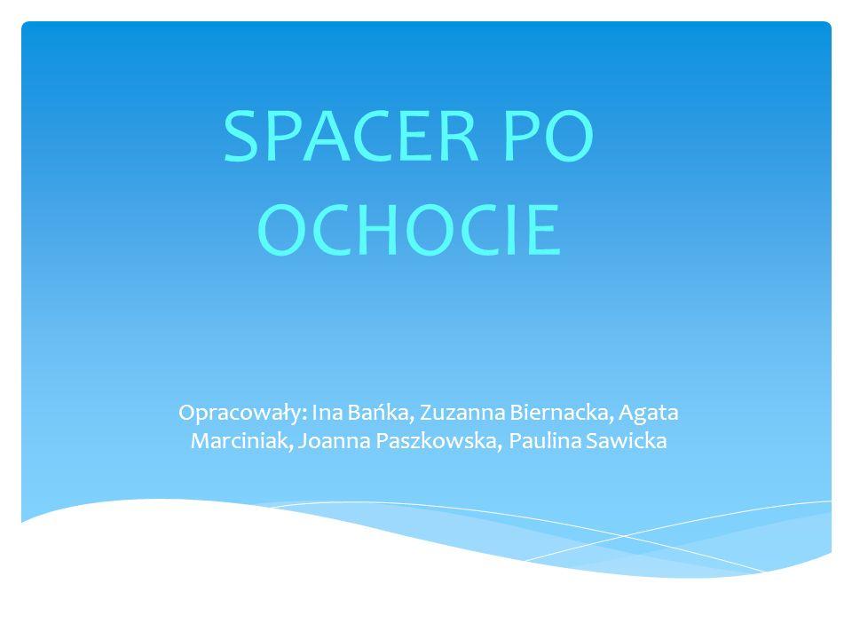 SPACER PO OCHOCIE Opracowały: Ina Bańka, Zuzanna Biernacka, Agata Marciniak, Joanna Paszkowska, Paulina Sawicka.