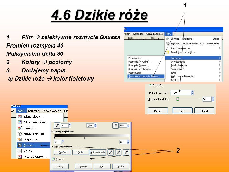 4.6 Dzikie róże 1 2 Filtr  selektywne rozmycie Gaussa