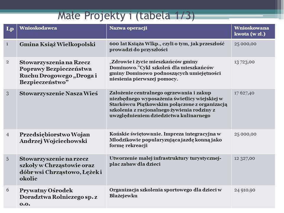 Małe Projekty i (tabela 1/3)
