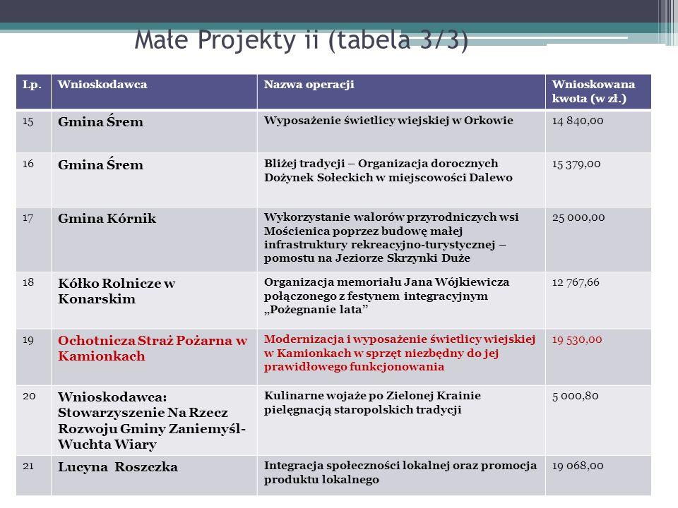 Małe Projekty ii (tabela 3/3)