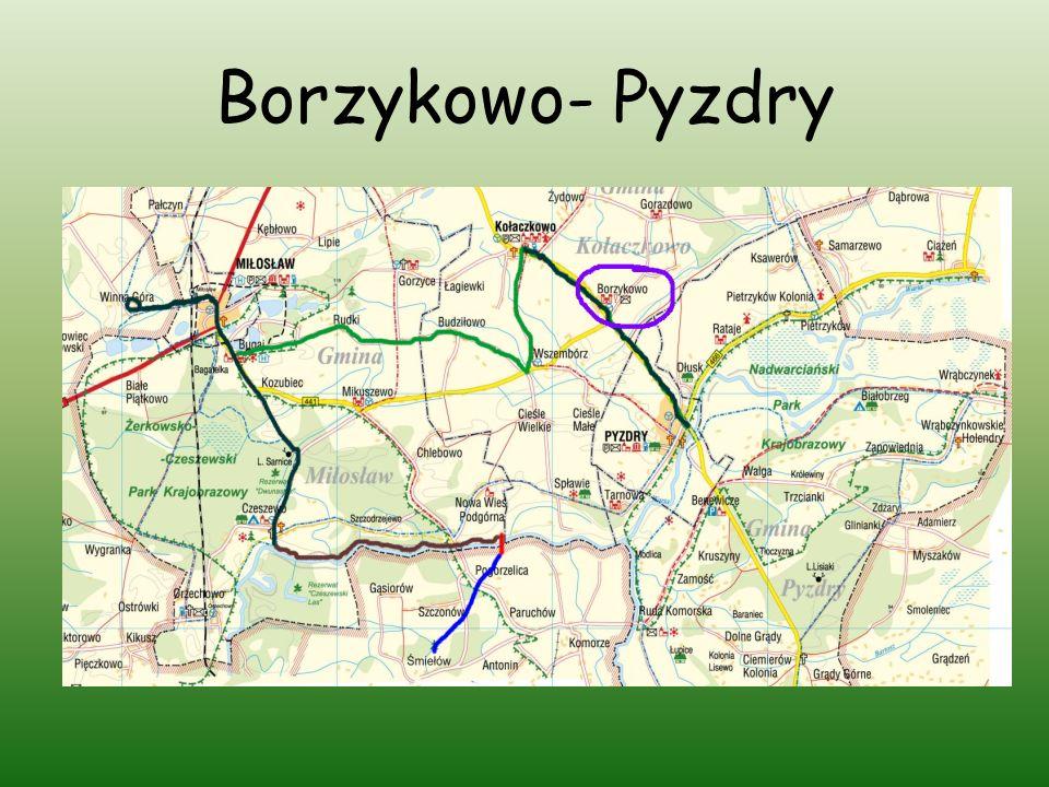 Borzykowo- Pyzdry
