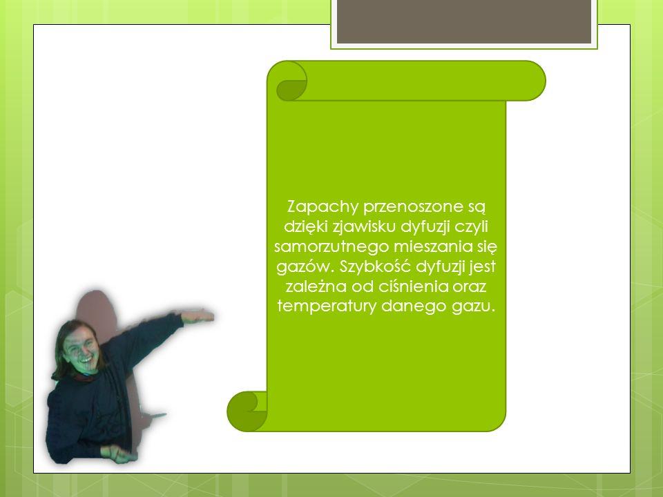 Zapachy przenoszone są dzięki zjawisku dyfuzji czyli samorzutnego mieszania się gazów.