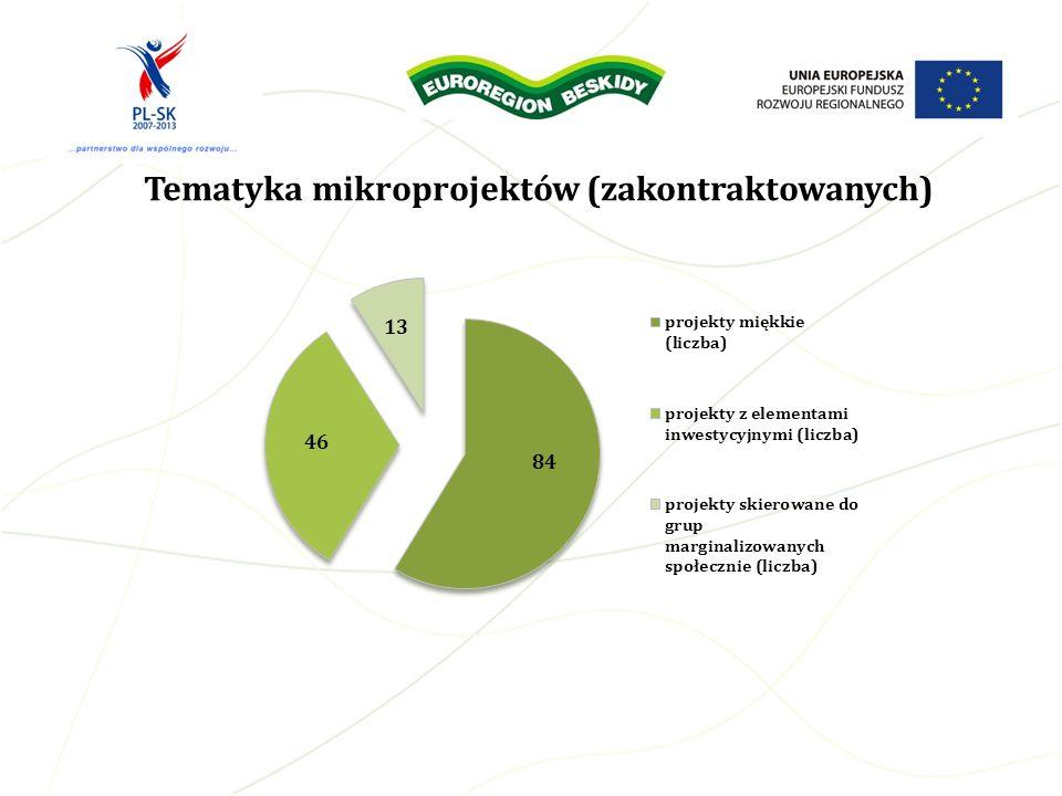 Tematyka mikroprojektów (zakontraktowanych)