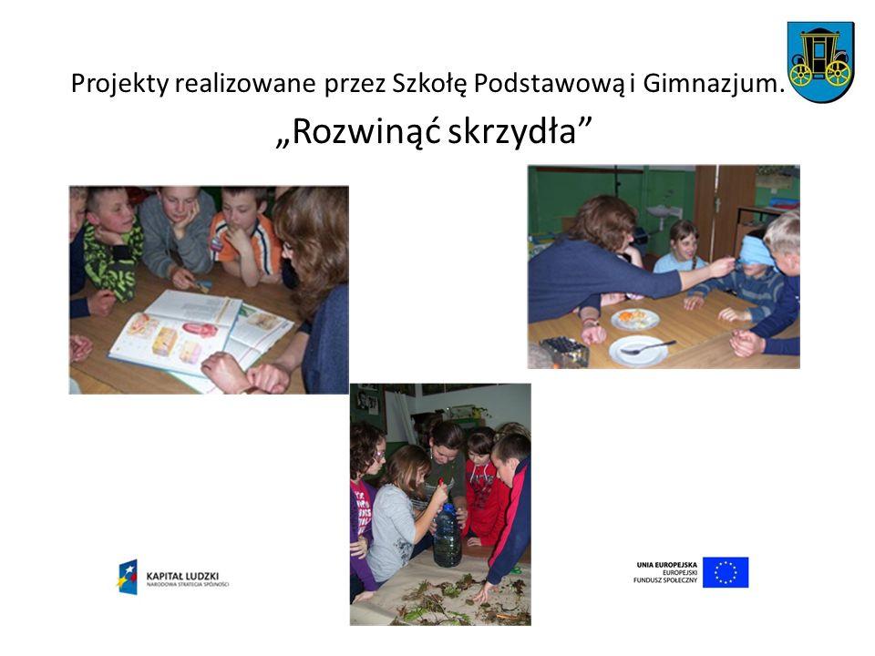 Projekty realizowane przez Szkołę Podstawową i Gimnazjum.