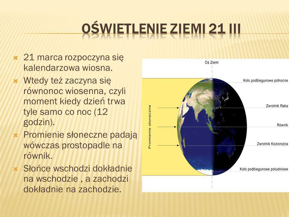 Oświetlenie Ziemi 21 III 21 marca rozpoczyna się kalendarzowa wiosna.
