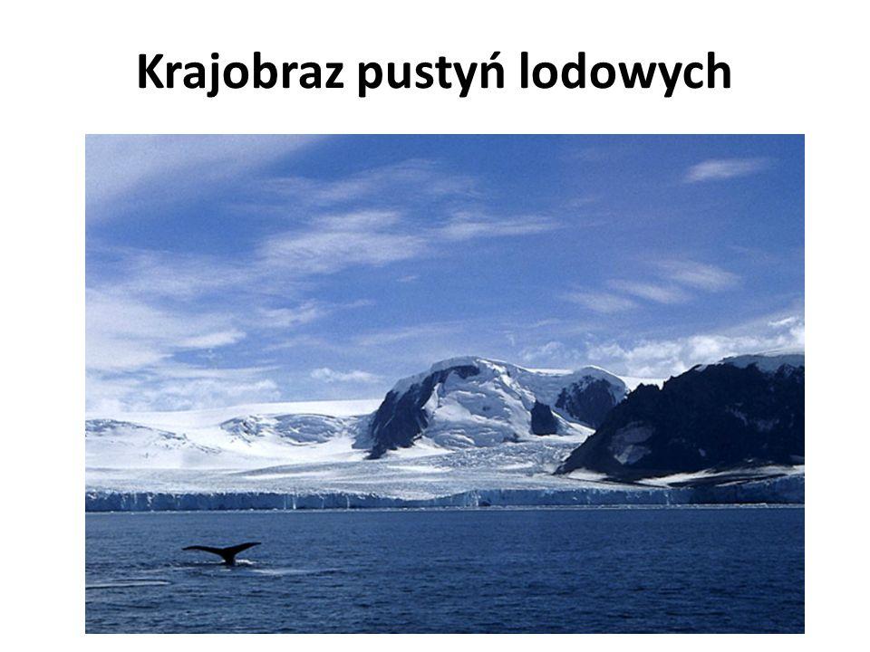 Krajobraz pustyń lodowych