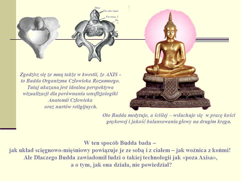 W ten spocób Budda bada –