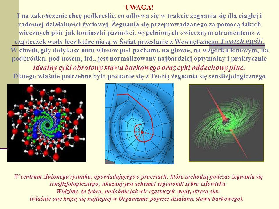 Widzimy, że żebra, podobnie jak wir cząsteczek wody,«kręcą się»