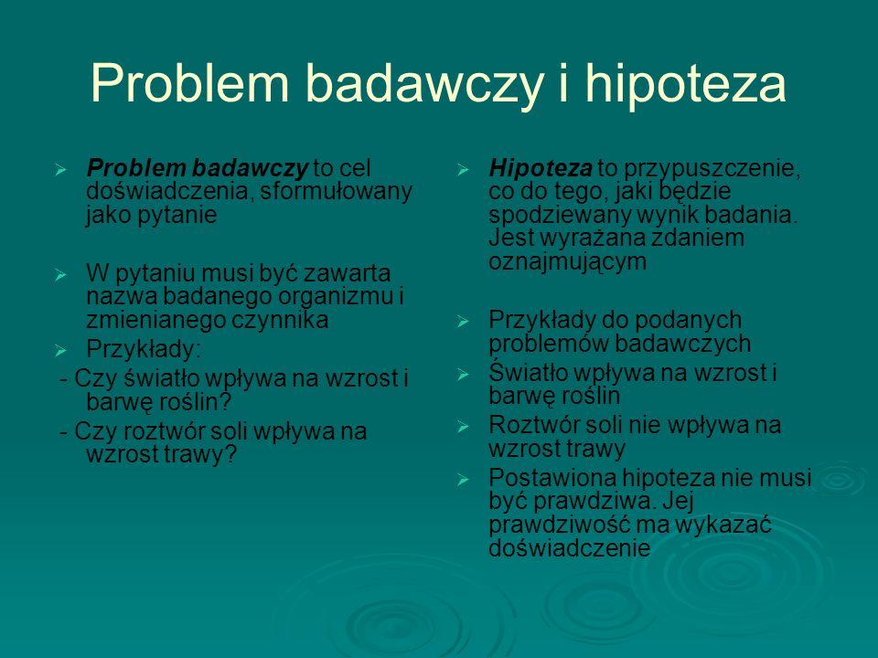 Problem badawczy i hipoteza
