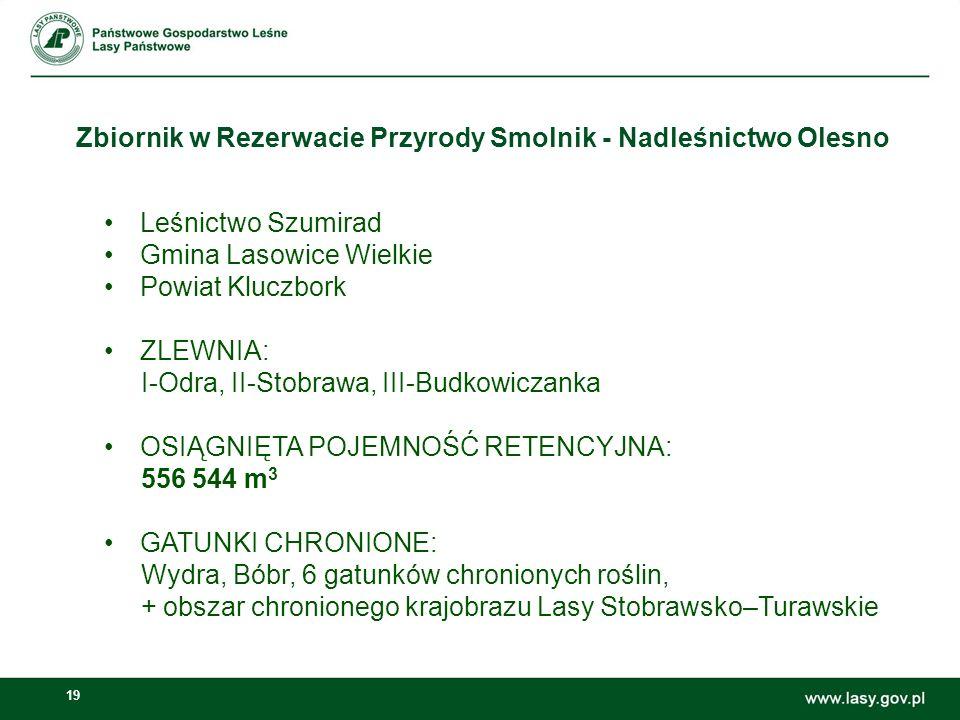Zbiornik w Rezerwacie Przyrody Smolnik - Nadleśnictwo Olesno