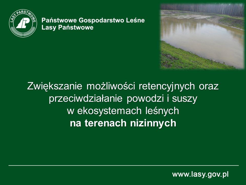 Zwiększanie możliwości retencyjnych oraz przeciwdziałanie powodzi i suszy w ekosystemach leśnych na terenach nizinnych