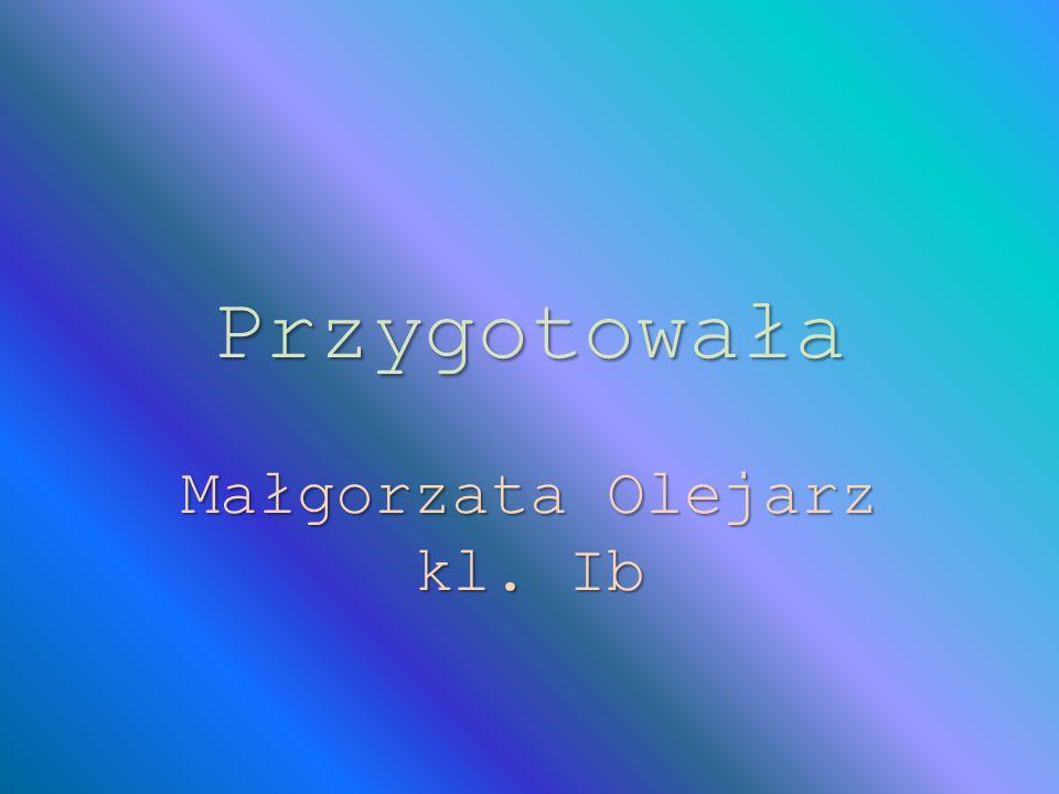 Małgorzata Olejarz kl. Ib