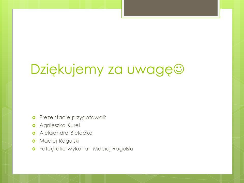 Dziękujemy za uwagę Prezentację przygotowali: Agnieszka Kurel