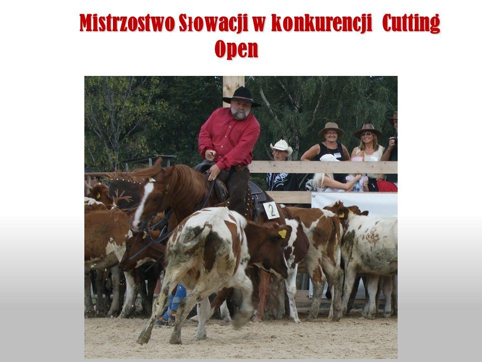 Mistrzostwo Słowacji w konkurencji Cutting Open