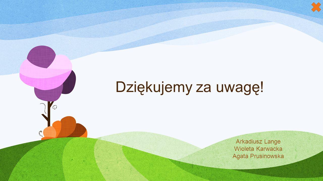 Dziękujemy za uwagę! Arkadiusz Lange Wioleta Karwacka