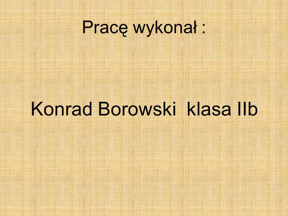 Konrad Borowski klasa IIb