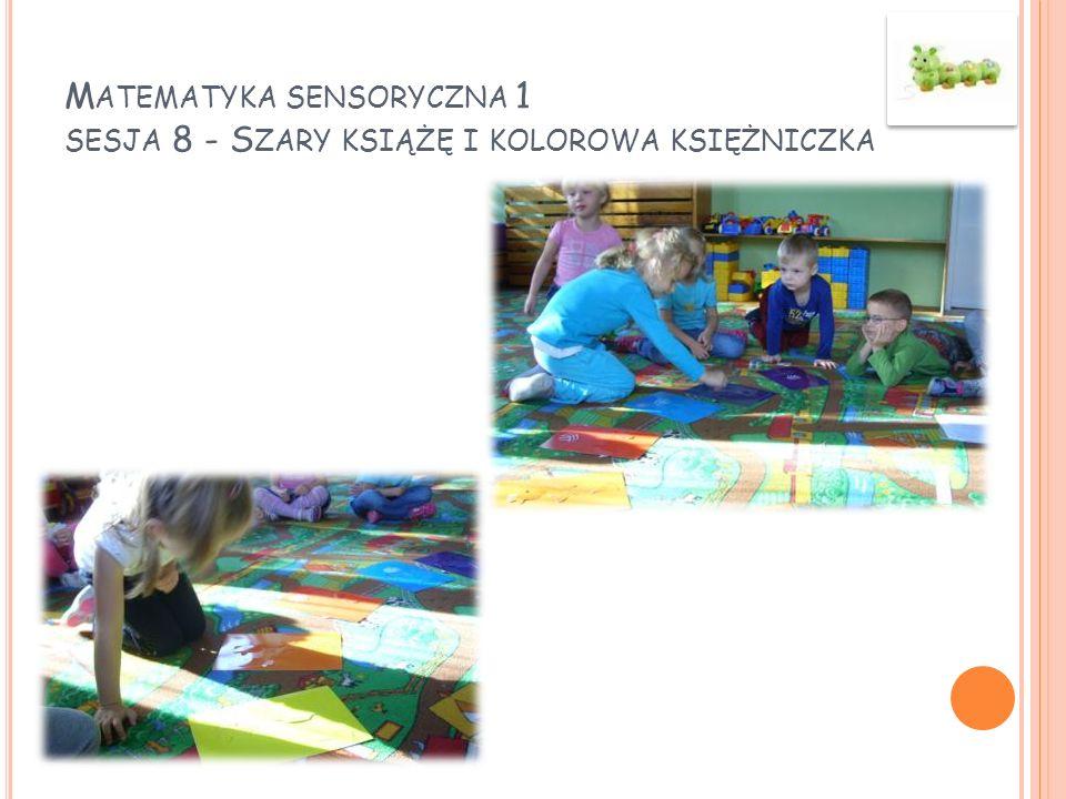 Matematyka sensoryczna 1 sesja 8 - Szary książę i kolorowa księżniczka
