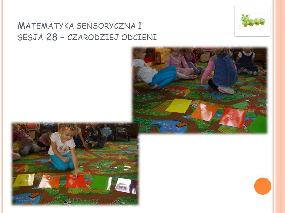 Matematyka sensoryczna 1 sesja 28 – czarodziej odcieni