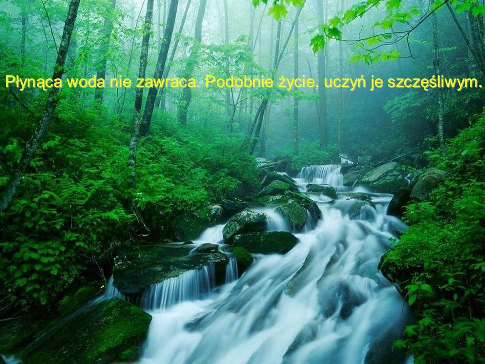Płynąca woda nie zawraca. Podobnie życie, uczyń je szczęśliwym.